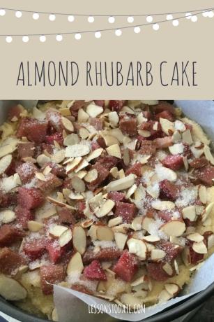 Almond & Rhubarb Cake