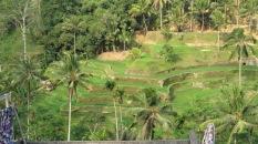 Tegallalang - Ubud